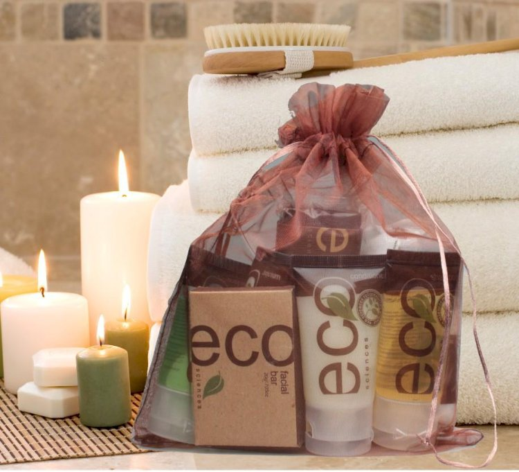 ECO SCIENCES Room Ready Kit in Organza Drawstring bag (Large)~ (10 per case) $4.99 each or less