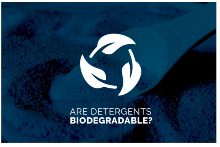 Are Detergents Biodegradable?
