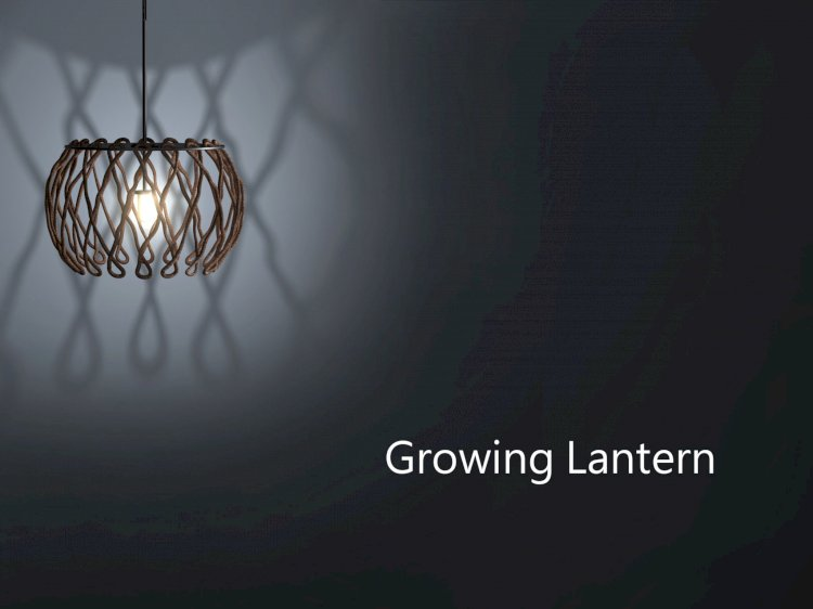 Growing lantern / Products and Applications