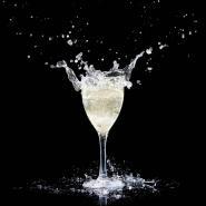 Polysafe Polycarbonate Drinkware Polysafe Vino