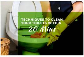 Techniques To Clean Your Toilet Within 20 Minutes