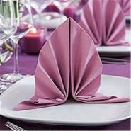 Premium polyester napkins at wholesale price provided by china manufacturer